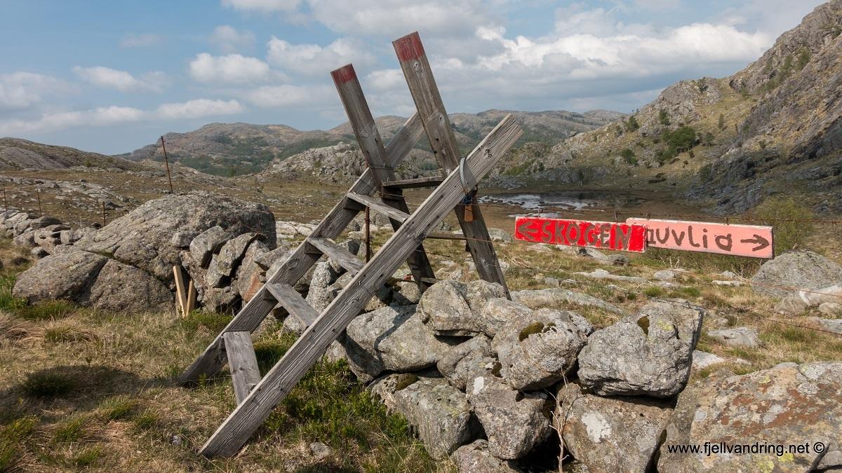 galleri-bjodnalia-snorestad_fottur_fjell-vandringas4