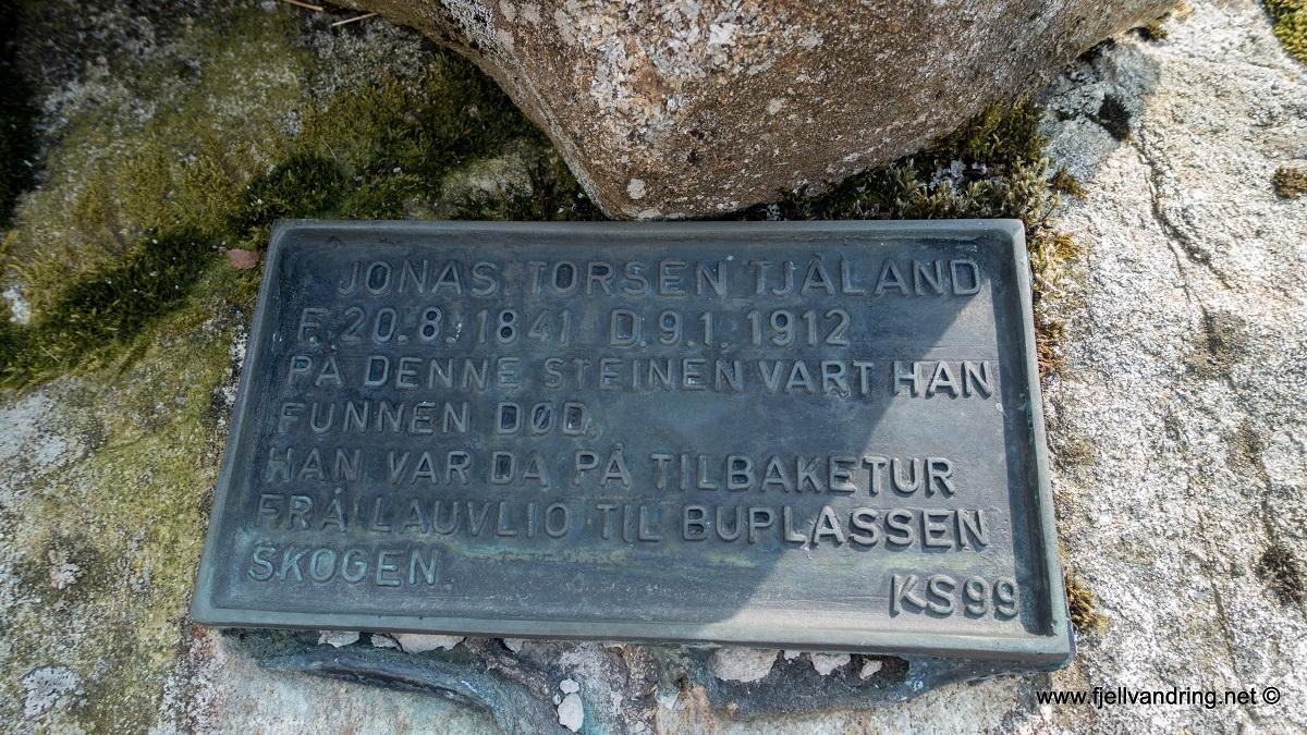 galleri-bjodnalia-snorestad_fottur_fjell-vandringas5