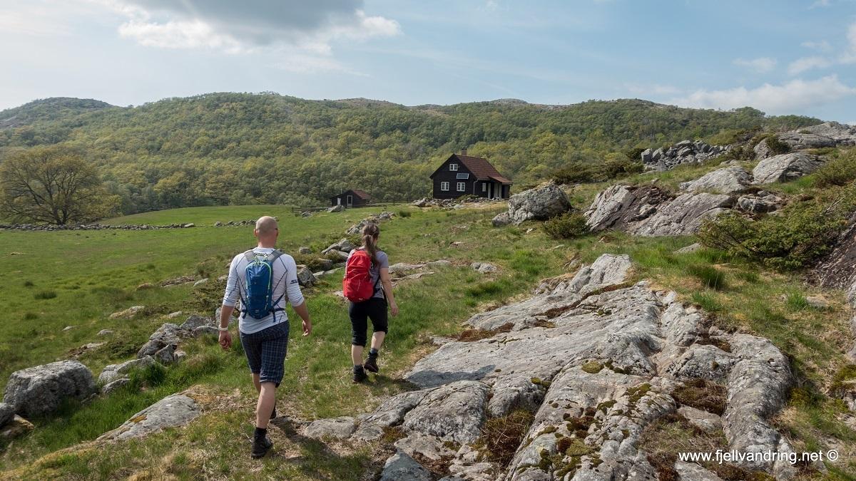galleri-bjodnalia-snorestad_fottur_fjell-vandringas8