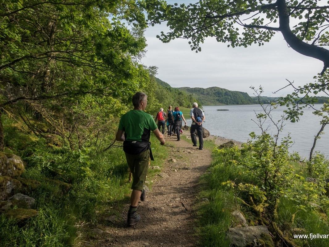 sealandsskogen-bjodnalia_fottur_fjell-vandringas4