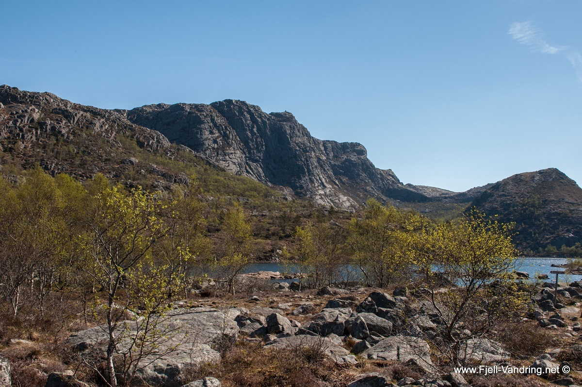 bynuten-selvikstakken_fottur_fjell-vandringas4