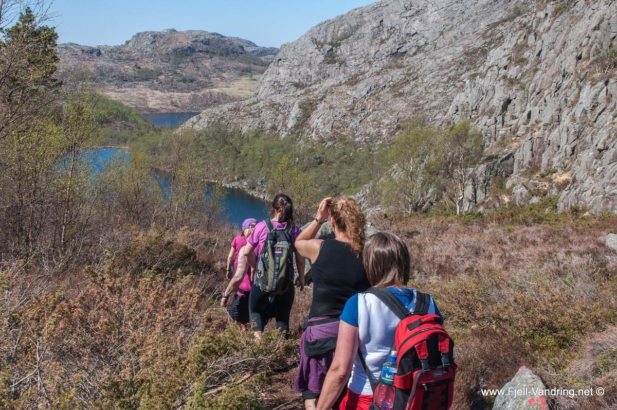 bynuten-selvikstakken_fottur_fjell-vandringas8