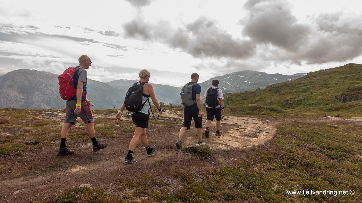 galleri-dronningstien_fottur_fjell-vandringas3