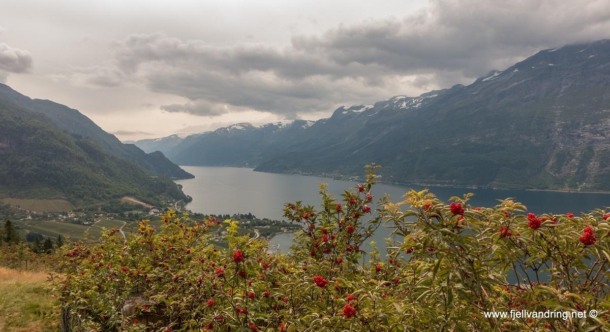 galleri-dronningstien_fottur_fjell-vandringas9