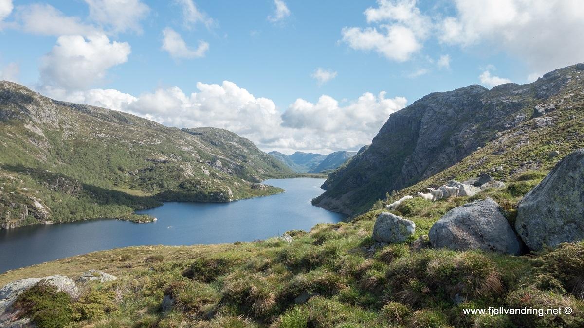galleri-eikeknuten_fottur_fjell-vandringas3