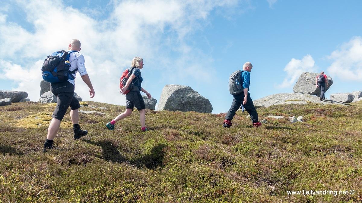 galleri-eikeknuten_fottur_fjell-vandringas4