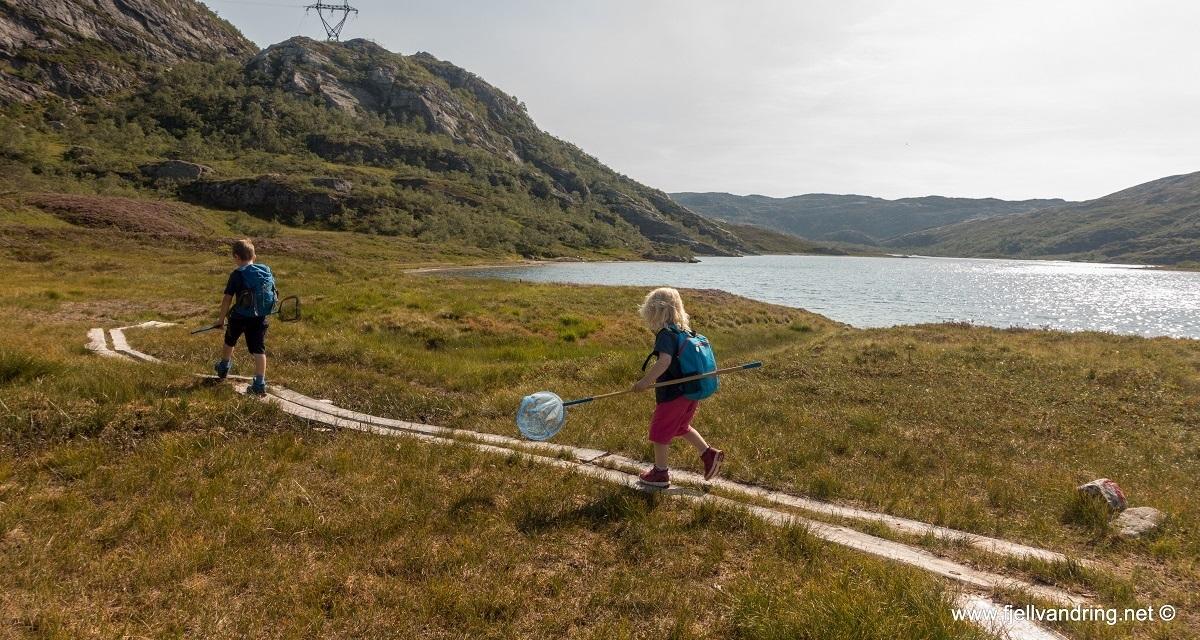 galleri-grautheller-fottur_turisthyttetur_fjell-vandringas8