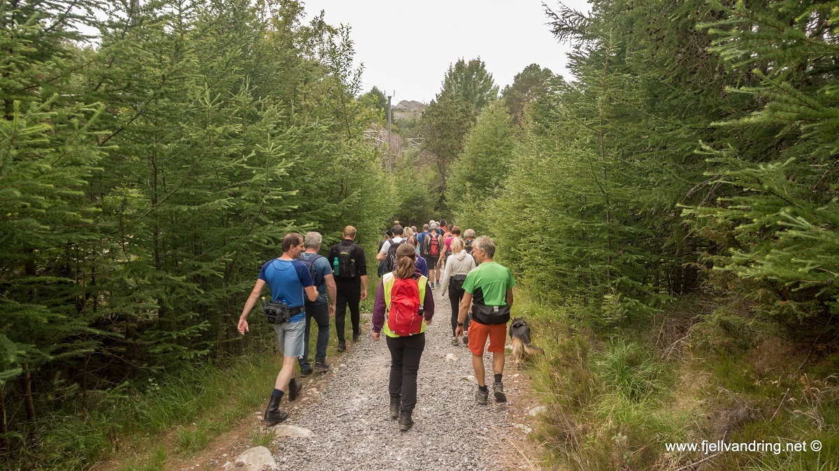 galleri-hellviksbolten_fottur_fjell-vandringas2