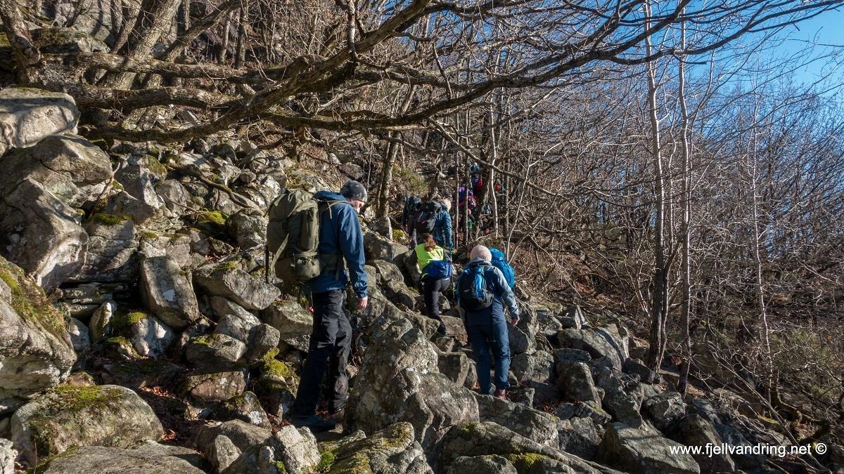 galleri-ogna-hellvik_fottur_fjell-vandringas3