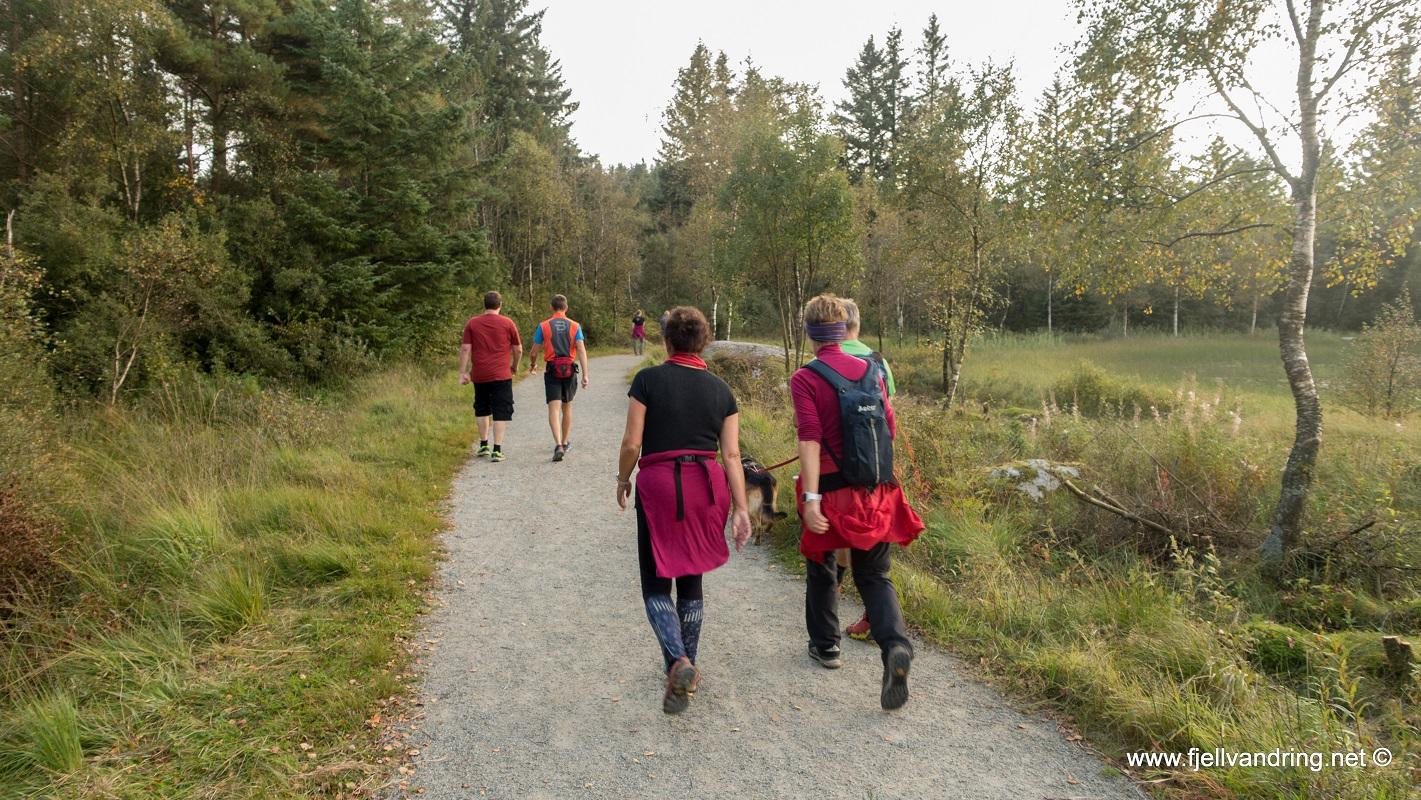 Melsvatnet - Fin rundtur for tur og trening