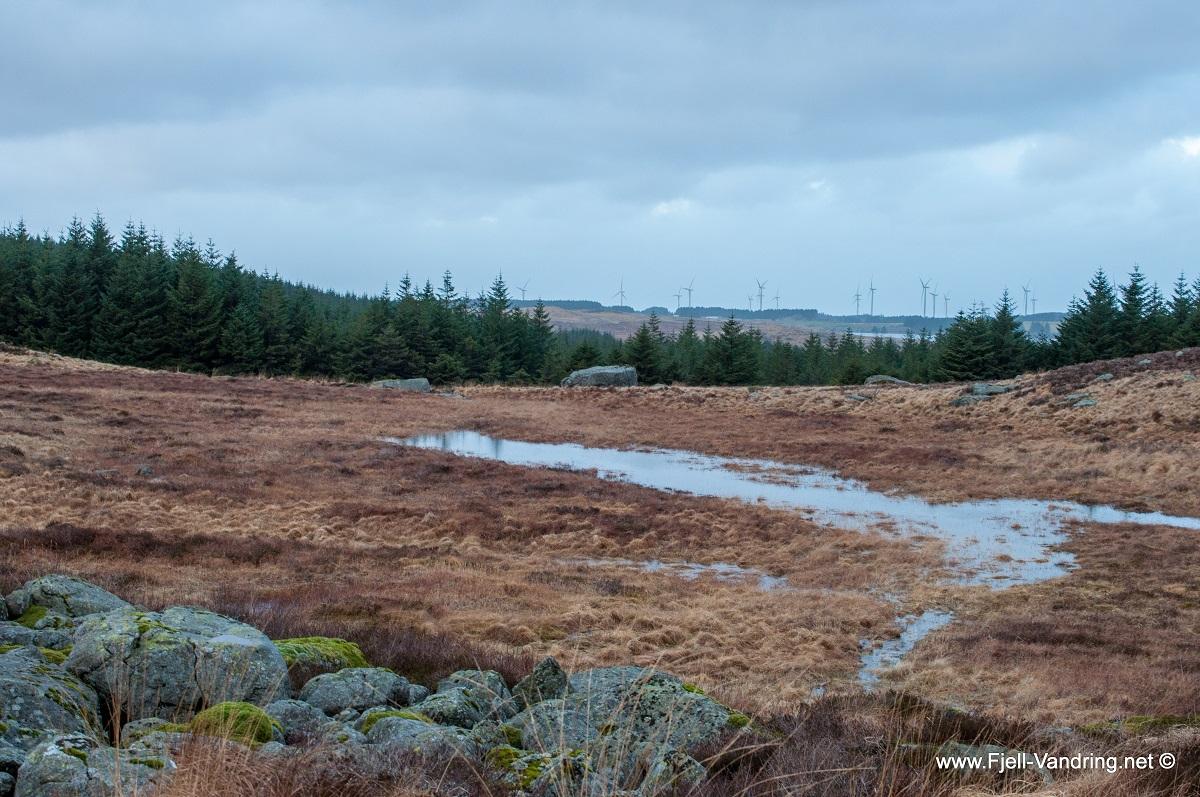 Synesvarden - Utsikt mot Obrestadheia og vindmøllene i bakgrunnen