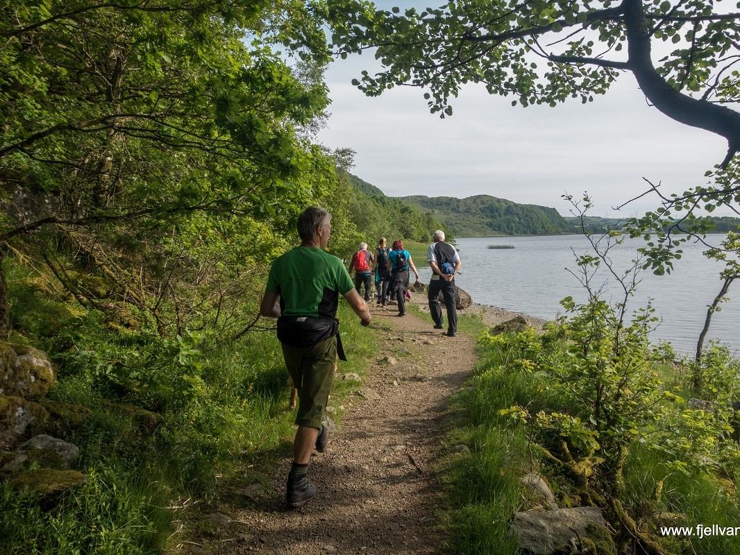 Sælandsskogen og Bjødnalaia - På vei ut langs Taksdalsvatnet