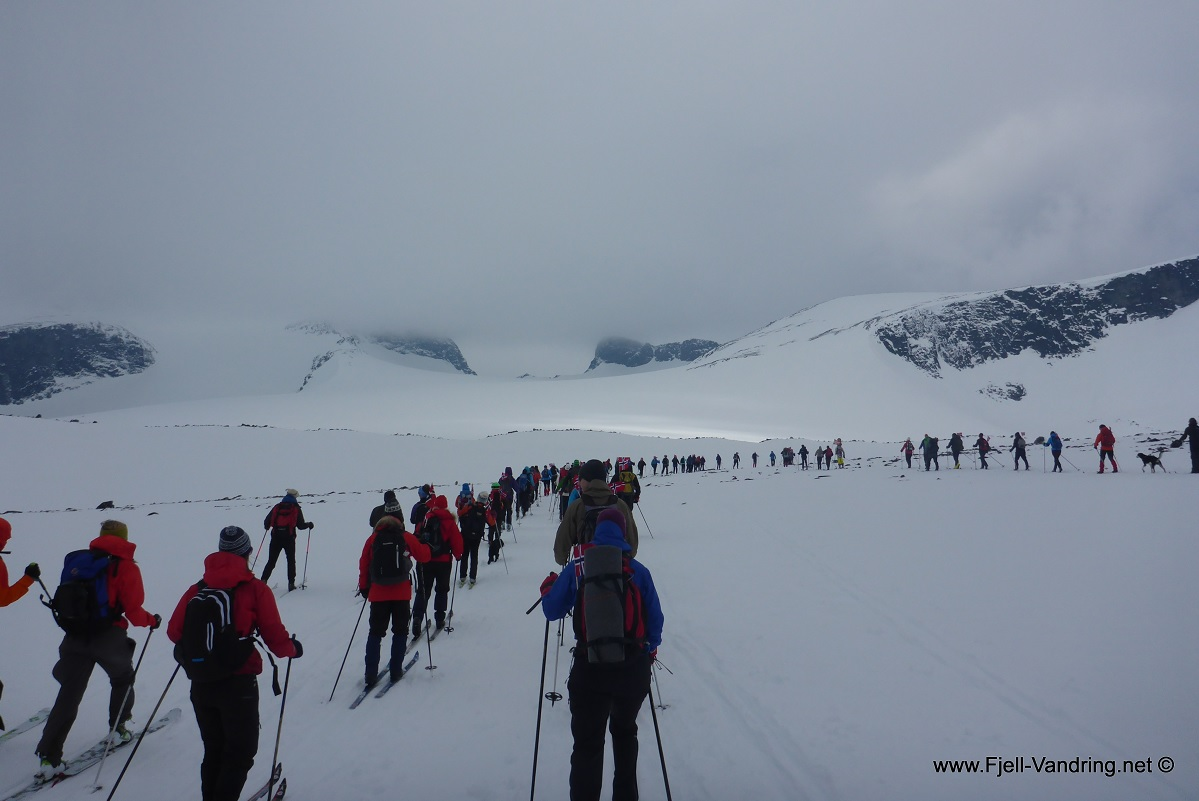 Galdhøpiggen - Guidet 17. mai tur