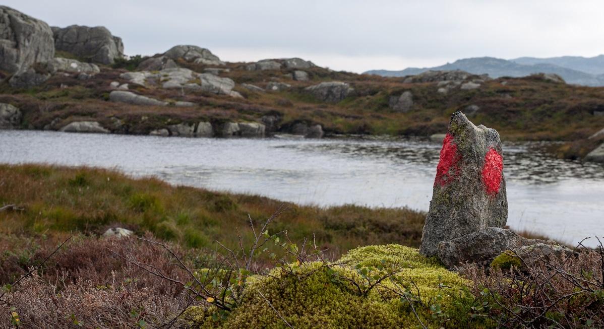 Grønhaug og Solliknuden - Merket og skiltet topptur
