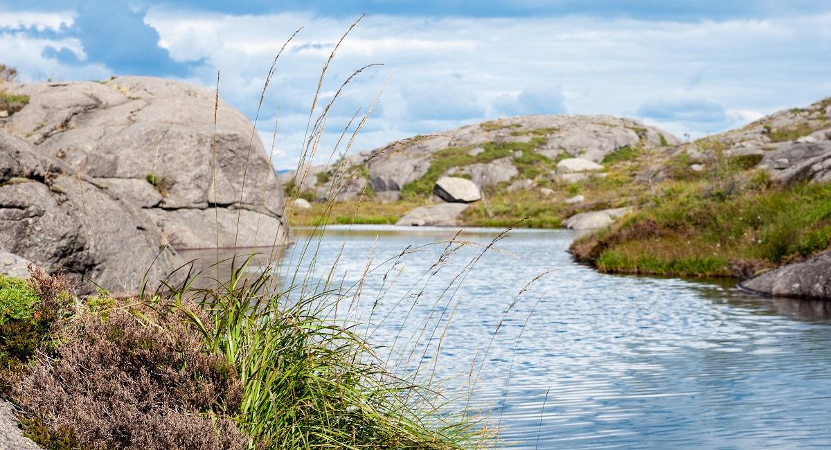 Hellersheia - Til toppen av Jøssingfjorden