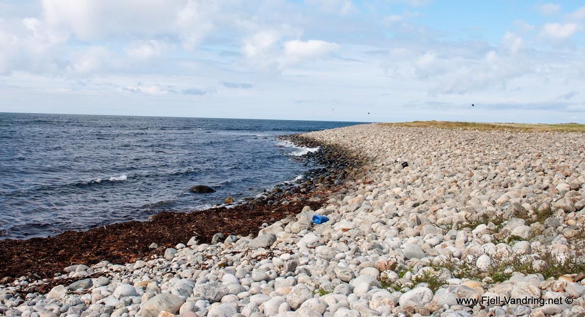Jærkysten - Tur fra Skeie til Orre friluftshus