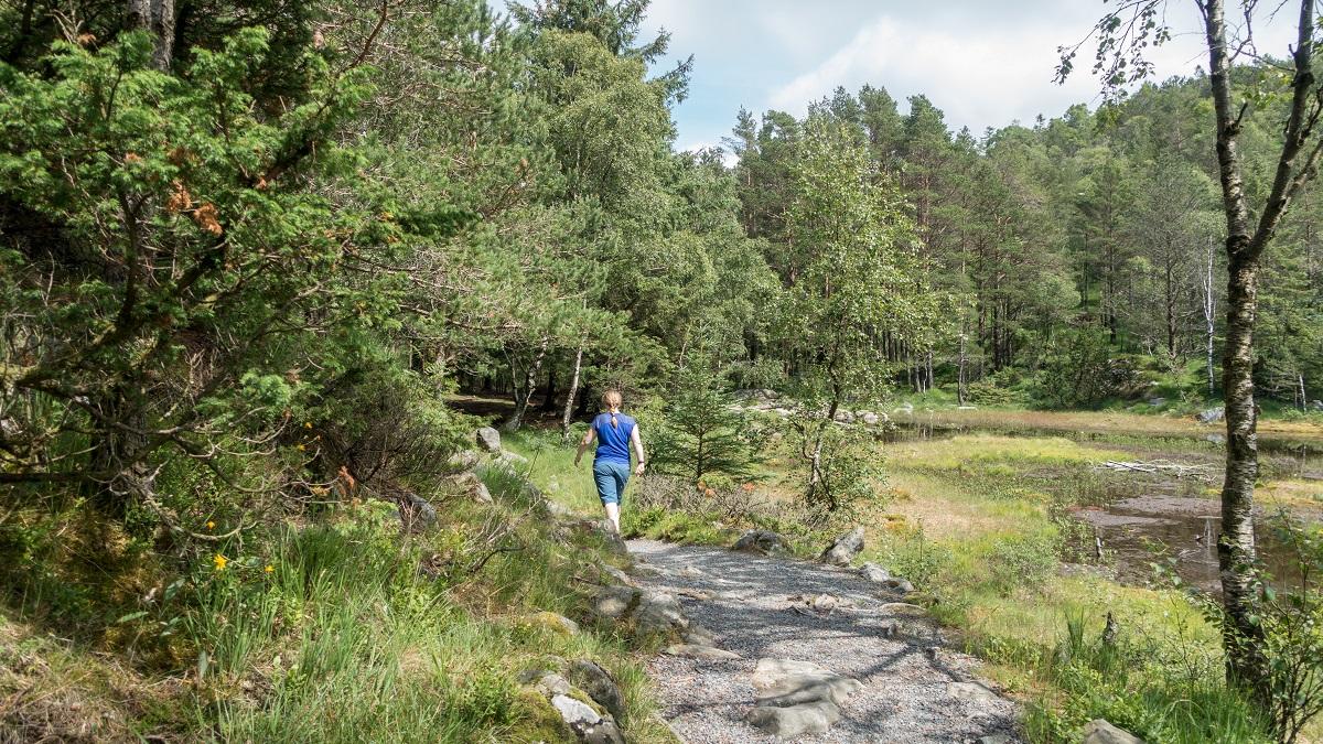 Kubbetjørn - Fotturen tilbake til Gramstad følger sti