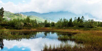 Kvitåvatn Natur & Kultursti - Rjukan (Tinn kommune)