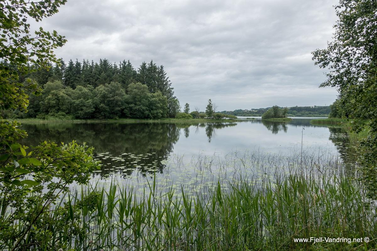 Midgarsormen - En fottur i Njåskogen anbefales også!