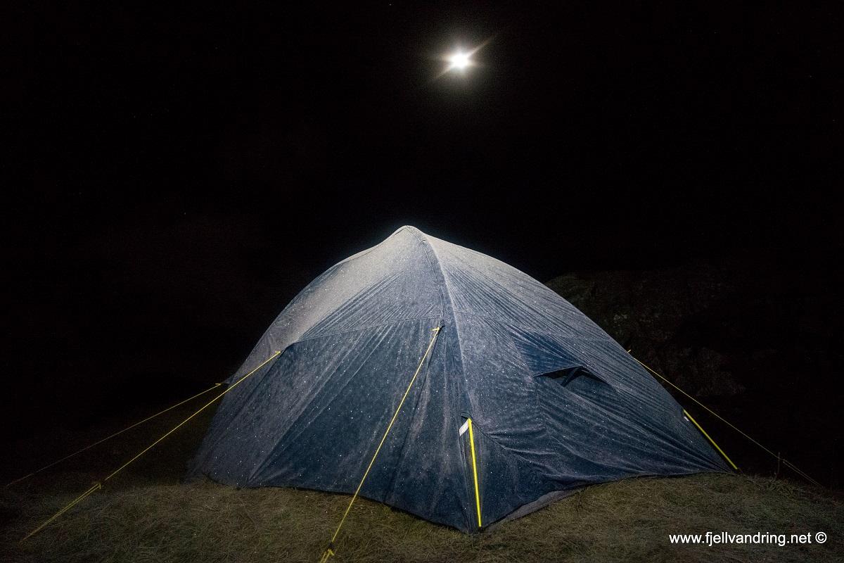 Natt i naturen året rundt - Vintertur