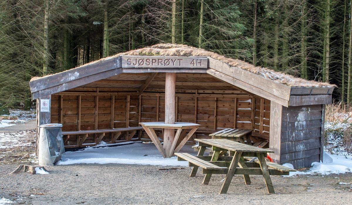 Salteskogen - Fin gapahuk i Salteskogen