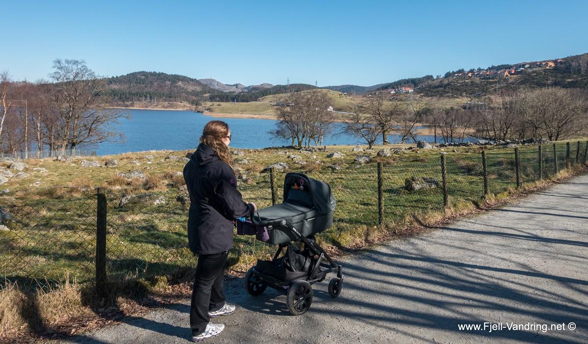 Stokkalandsvatnet - Familievennlig rundtur i Sandnes