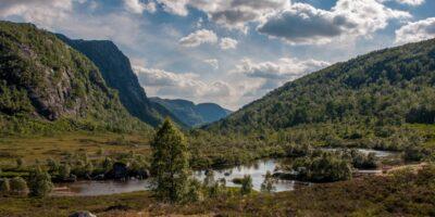 Støle Turisthytte - Fjellveien fra Tomannsbu