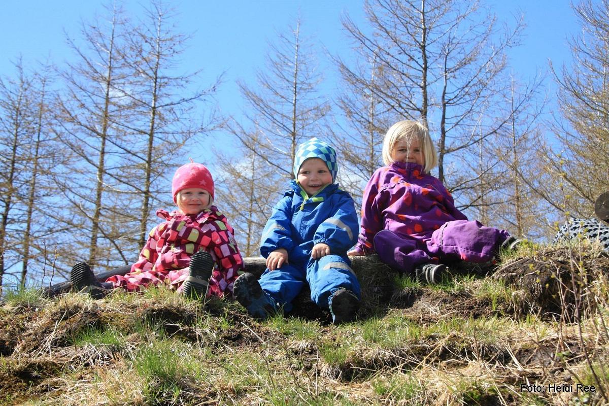 Familievennlig Fellestur Mai 2015 - Brekko Friluftsområde (Gjennomført)
