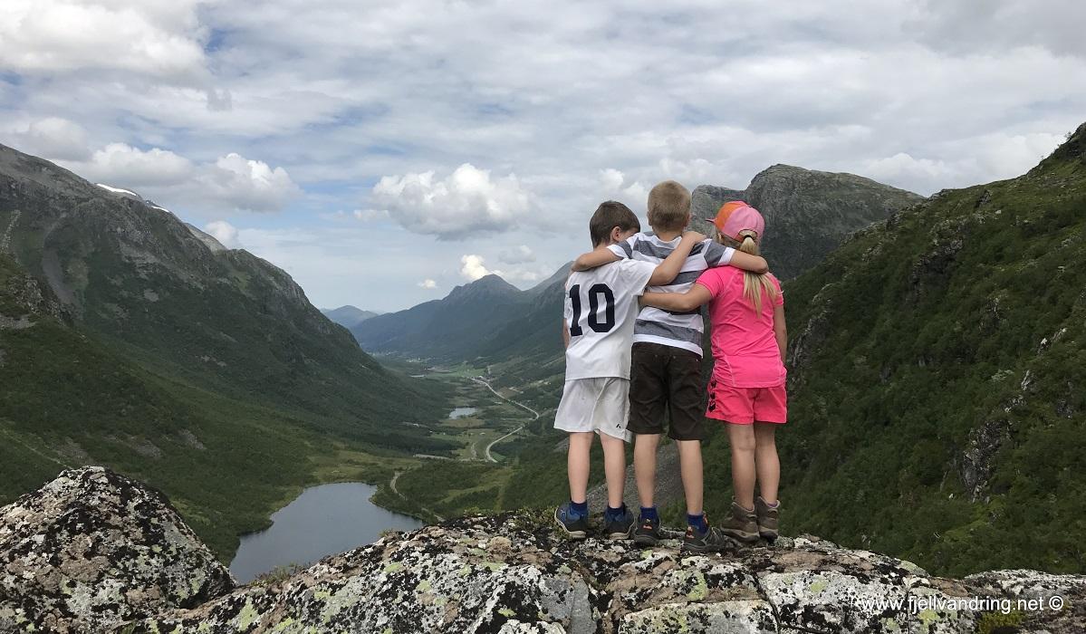 Den Trondhjemske postvei - Fra Herdalen til Ljøbrekka