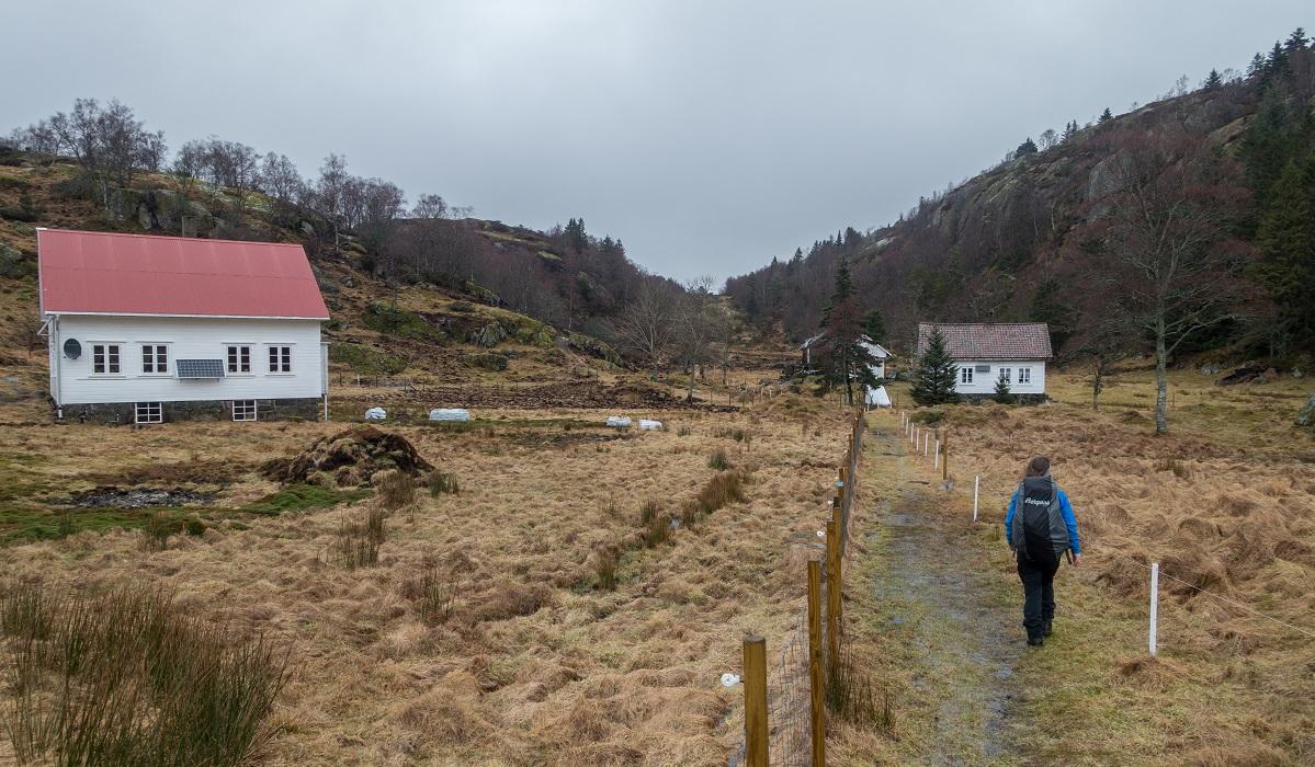 Fjellgården Li - Rundtur tilbake til Fidsel