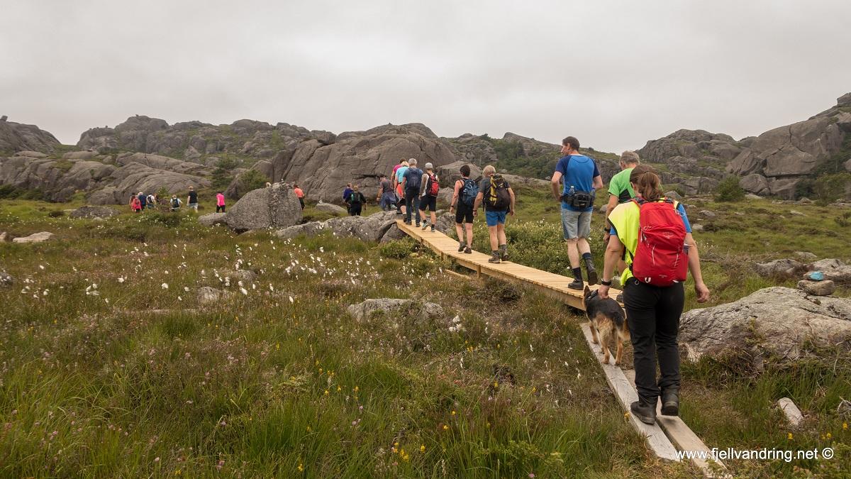 Hellviksbolten - Kloppet sti