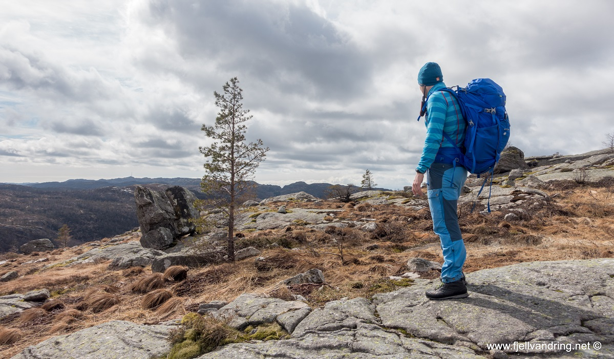 Jegningsknuten - Kjell Arild studerer terrenget