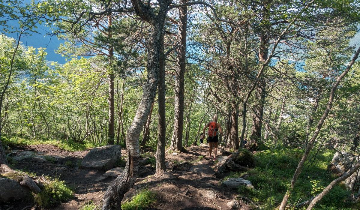 Rampestreken - Fottur og lia i stigende terreng