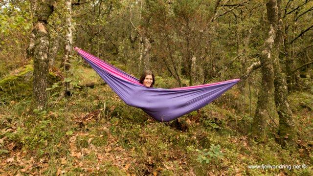 Sælandskogen - På hengekøyetur i spennende omgivelser