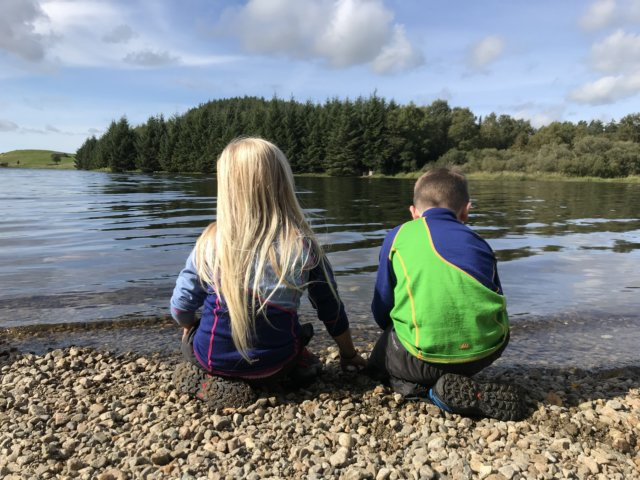 Sælandsskogen - Turbeskrivelse