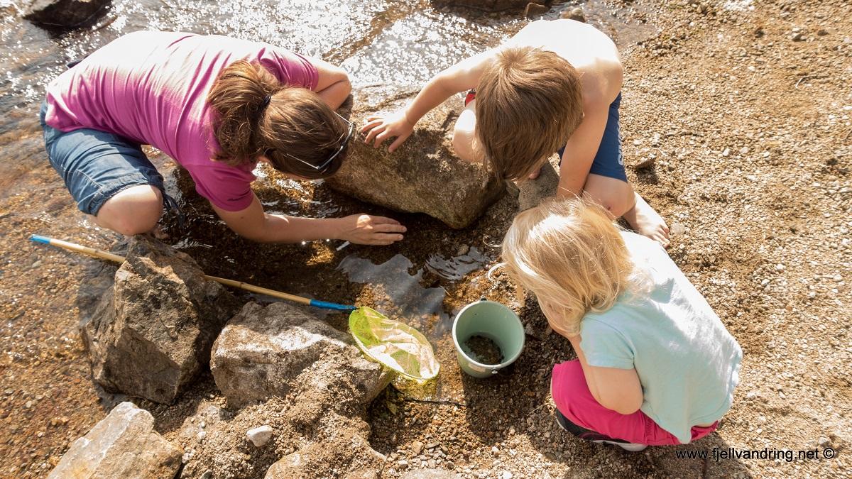 Tengesdalsvatnet - Lek i vannkanten