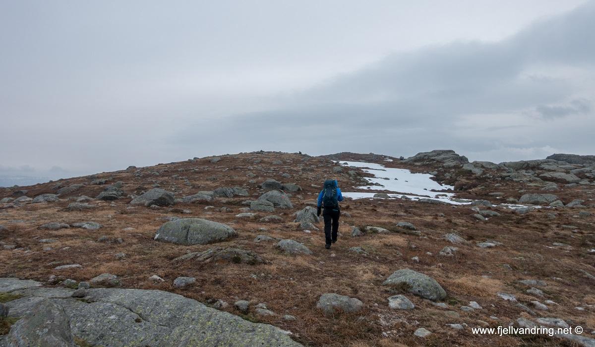 Trollarinda - Godt terreng mot toppen å ferdes i