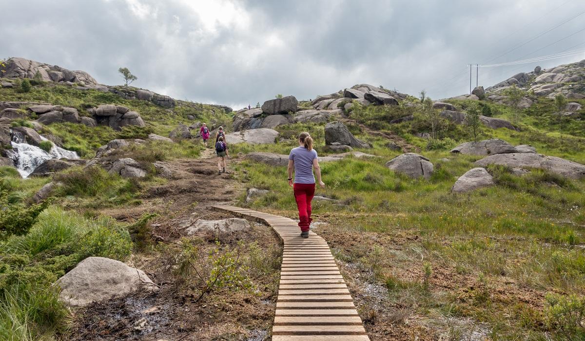 Trollpikken - Deler av terrenget er kloppet