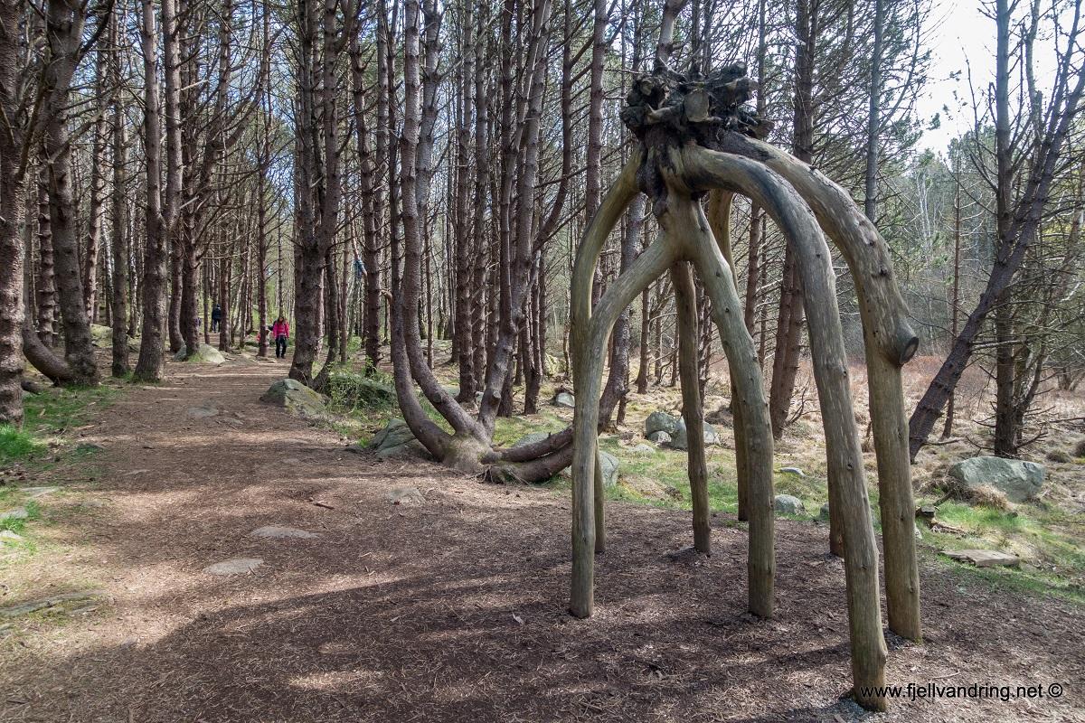 Trollskogen - Gode veier og stier