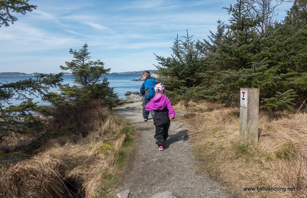 Trollskogen - Fin sti langs kysten