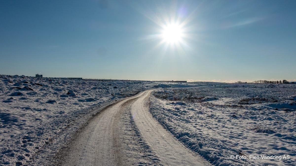 Hanabergsmarka & Vigreskogen - Gode veier og stier i Hanabergsmarka