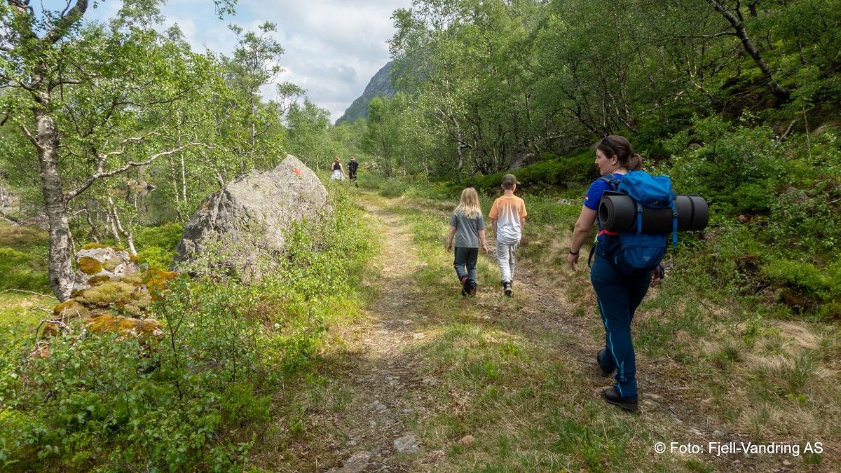 Smørkamdalen - Turen starter på traktorvei